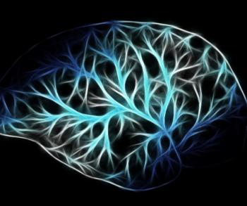 De mythe van de dominante hersenhelften
